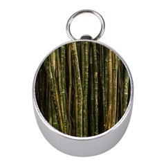 Green And Brown Bamboo Trees Mini Silver Compasses