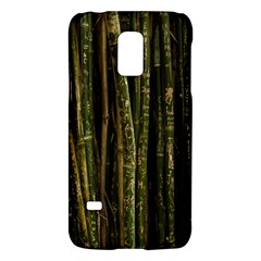 Green And Brown Bamboo Trees Galaxy S5 Mini