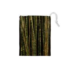Green And Brown Bamboo Trees Drawstring Pouches (Small)