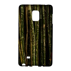 Green And Brown Bamboo Trees Galaxy Note Edge