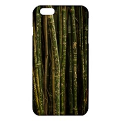Green And Brown Bamboo Trees Iphone 6 Plus/6s Plus Tpu Case