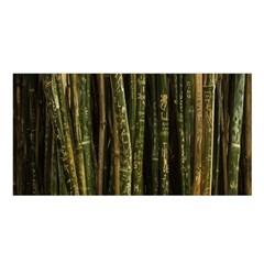 Green And Brown Bamboo Trees Satin Shawl