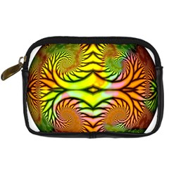 Fractals Ball About Abstract Digital Camera Cases