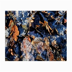 Frost Leaves Winter Park Morning Small Glasses Cloth (2-Side)