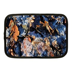 Frost Leaves Winter Park Morning Netbook Case (Medium)