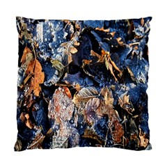Frost Leaves Winter Park Morning Standard Cushion Case (One Side)