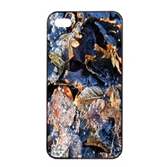Frost Leaves Winter Park Morning Apple iPhone 4/4s Seamless Case (Black)