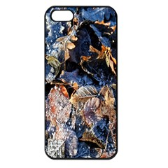 Frost Leaves Winter Park Morning Apple Iphone 5 Seamless Case (black)