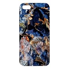 Frost Leaves Winter Park Morning Apple Iphone 5 Premium Hardshell Case