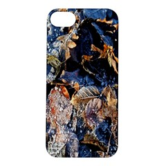 Frost Leaves Winter Park Morning Apple Iphone 5s/ Se Hardshell Case