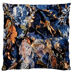 Frost Leaves Winter Park Morning Standard Flano Cushion Case (Two Sides)