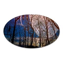 Full Moon Forest Night Darkness Oval Magnet