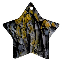 Grey Yellow Stone  Star Ornament (Two Sides)
