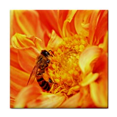 Honey Bee Takes Nectar Tile Coasters