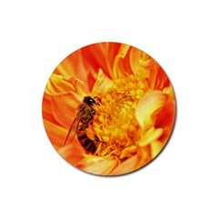 Honey Bee Takes Nectar Rubber Round Coaster (4 Pack)