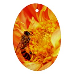 Honey Bee Takes Nectar Oval Ornament (Two Sides)
