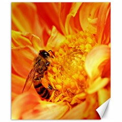 Honey Bee Takes Nectar Canvas 20  x 24