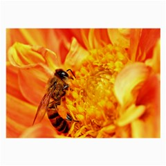Honey Bee Takes Nectar Large Glasses Cloth (2-Side)