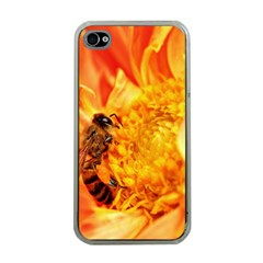 Honey Bee Takes Nectar Apple iPhone 4 Case (Clear)