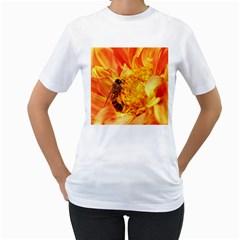 Honey Bee Takes Nectar Women s T Shirt (white)