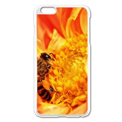 Honey Bee Takes Nectar Apple Iphone 6 Plus/6s Plus Enamel White Case