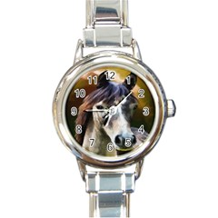 Horse Horse Portrait Animal Round Italian Charm Watch