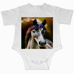 Horse Horse Portrait Animal Infant Creepers