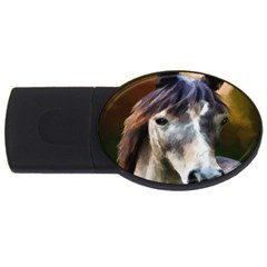 Horse Horse Portrait Animal USB Flash Drive Oval (2 GB)