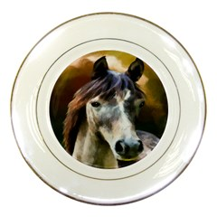 Horse Horse Portrait Animal Porcelain Plates