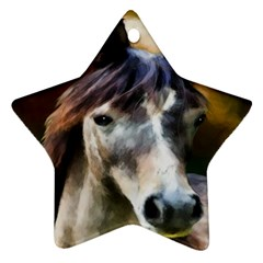 Horse Horse Portrait Animal Star Ornament (Two Sides)