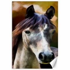 Horse Horse Portrait Animal Canvas 12  x 18