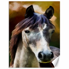 Horse Horse Portrait Animal Canvas 18  x 24