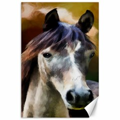 Horse Horse Portrait Animal Canvas 24  x 36