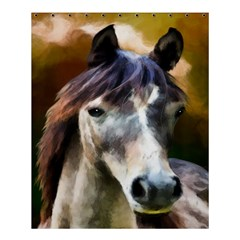 Horse Horse Portrait Animal Shower Curtain 60  x 72  (Medium)