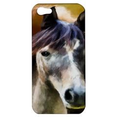 Horse Horse Portrait Animal Apple Iphone 5 Hardshell Case