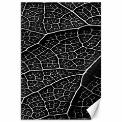 Leaf Pattern  B&w Canvas 12  x 18