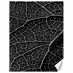 Leaf Pattern  B&w Canvas 18  X 24