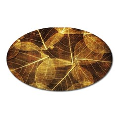 Leaves Autumn Texture Brown Oval Magnet