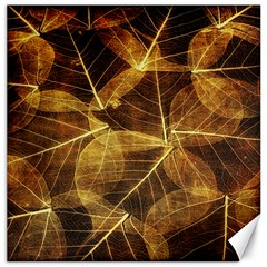 Leaves Autumn Texture Brown Canvas 20  x 20