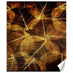 Leaves Autumn Texture Brown Canvas 20  x 24