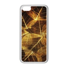 Leaves Autumn Texture Brown Apple iPhone 5C Seamless Case (White)