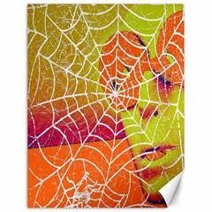 Orange Guy Spider Web Canvas 18  x 24