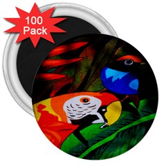 Papgei Red Bird Animal World Towel 3  Magnets (100 pack)