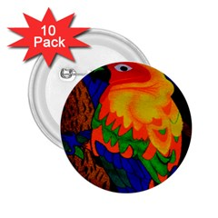 Parakeet Colorful Bird Animal 2.25  Buttons (10 pack)