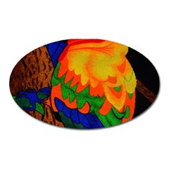 Parakeet Colorful Bird Animal Oval Magnet