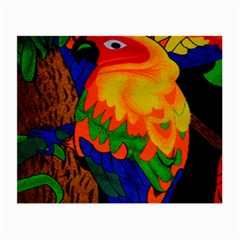 Parakeet Colorful Bird Animal Small Glasses Cloth (2-Side)