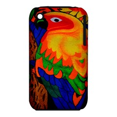 Parakeet Colorful Bird Animal iPhone 3S/3GS