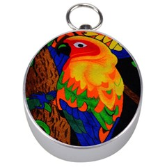 Parakeet Colorful Bird Animal Silver Compasses