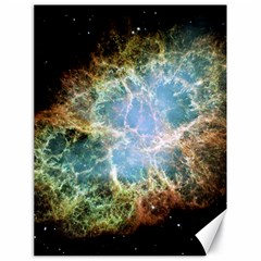 Crab Nebula Canvas 18  X 24