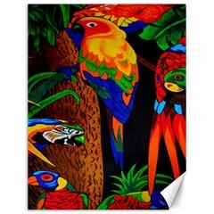 Parrots Aras Lori Parakeet Birds Canvas 12  x 16